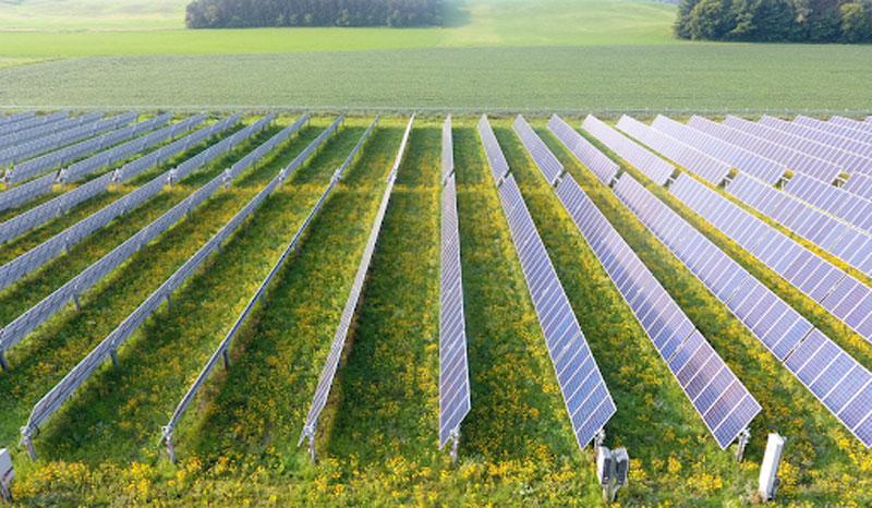lưu ý khi lắp điện mặt trời mặt đất